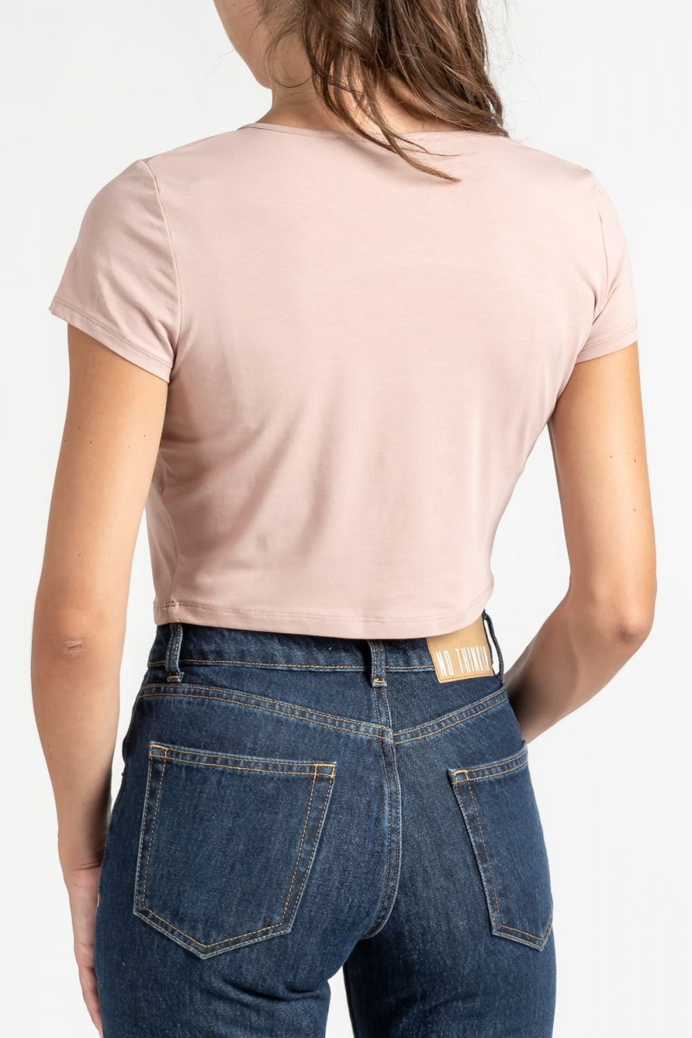 Cropped cut out salmon top